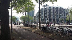 Голландський спальний район